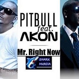 PITBULL ft. AKON - Mr. Right Now