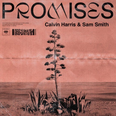 Calvin HARRIS & Sam SMITH - Promises