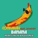 CONKARAH & SHAGGY - Banana (DJ Fle Minisiren rmx)